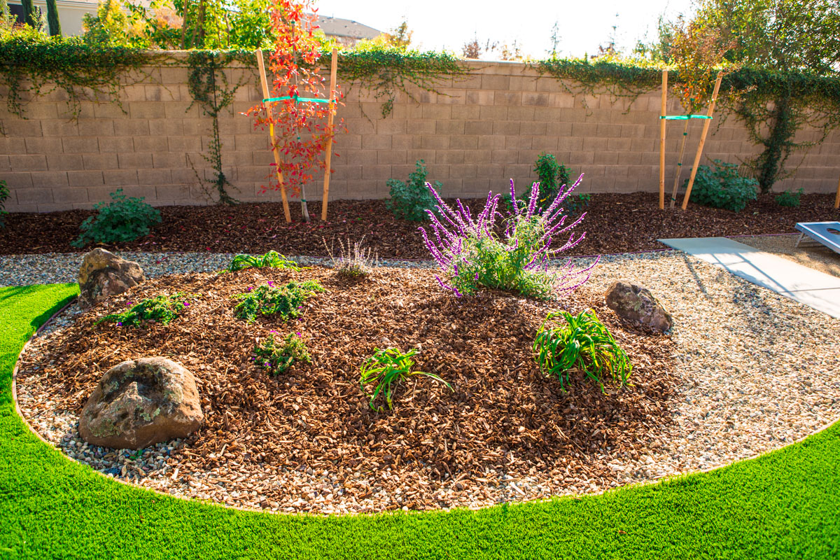 Best xeriscape shrubs fivestar landscape sacramento for Landscaping rocks sacramento