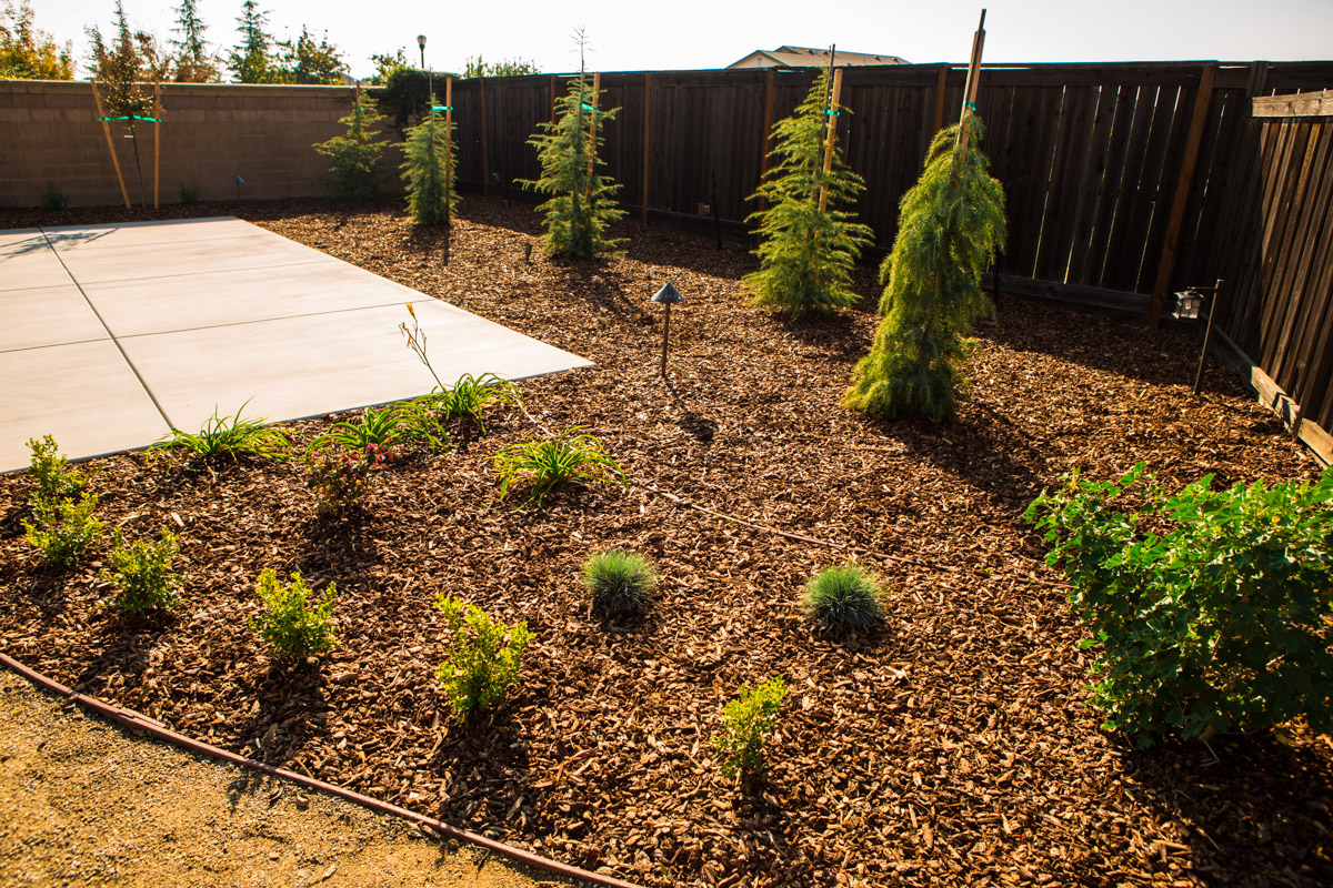 Folsom landscape installation and construction for Landscape installation