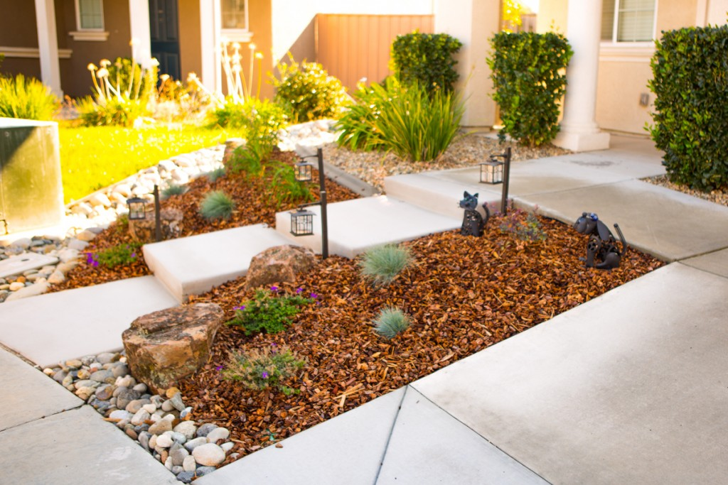 Drought Proof Landscape Renovation Sacramento