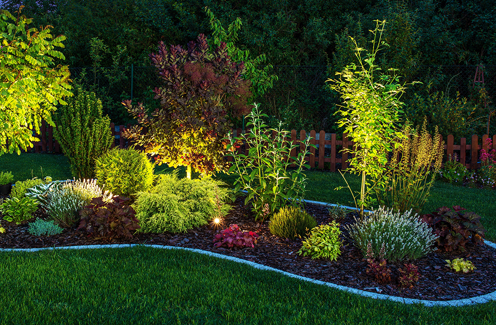 Landscape Lighting Sacramento