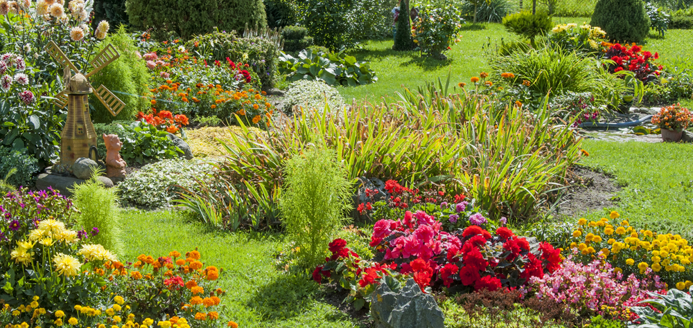 Theme Butterfly Garden Landscaping