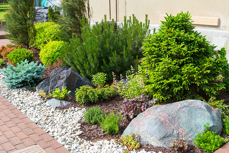 Side Yard Landscape Design Sacramento