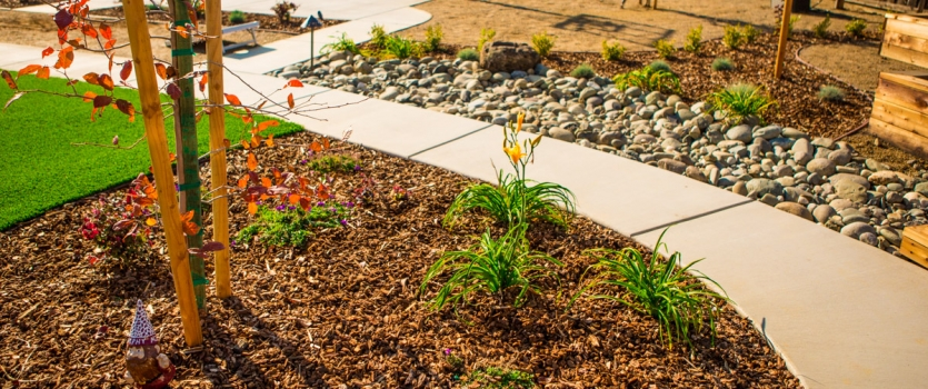 Rain Water Conservation for Folsom Landscapes
