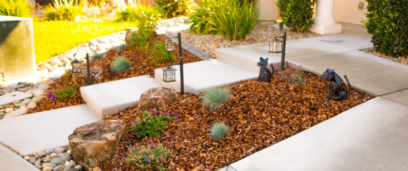 Sacramento Landscaping On A Water Budget