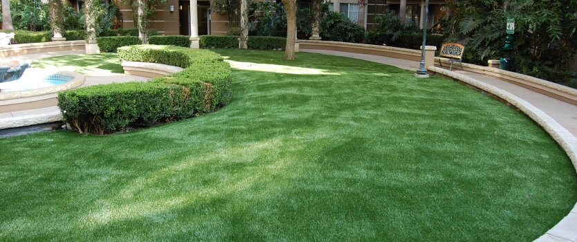 Xeriscaping: Artificial Grass 101