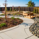 xeriscaping and drought tolerant