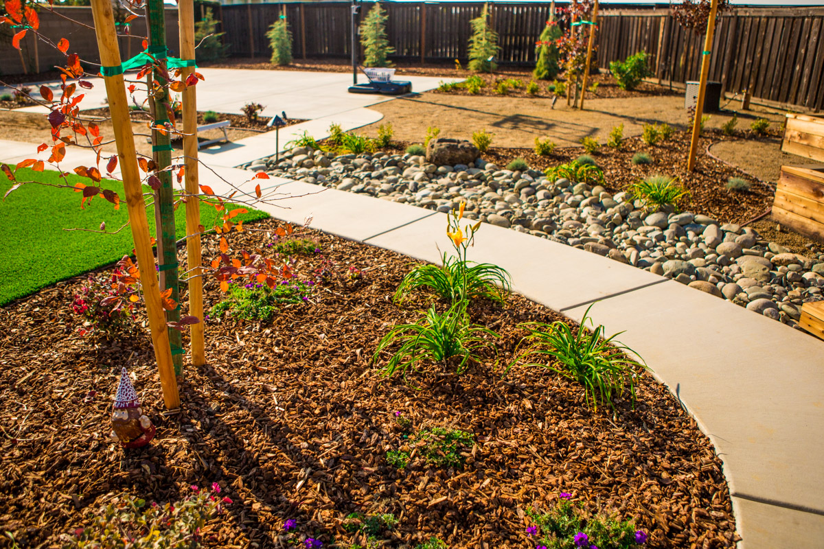 Rain Water Conservation For Folsom Landscapes