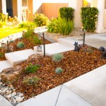 Landscaping On A Water Budget