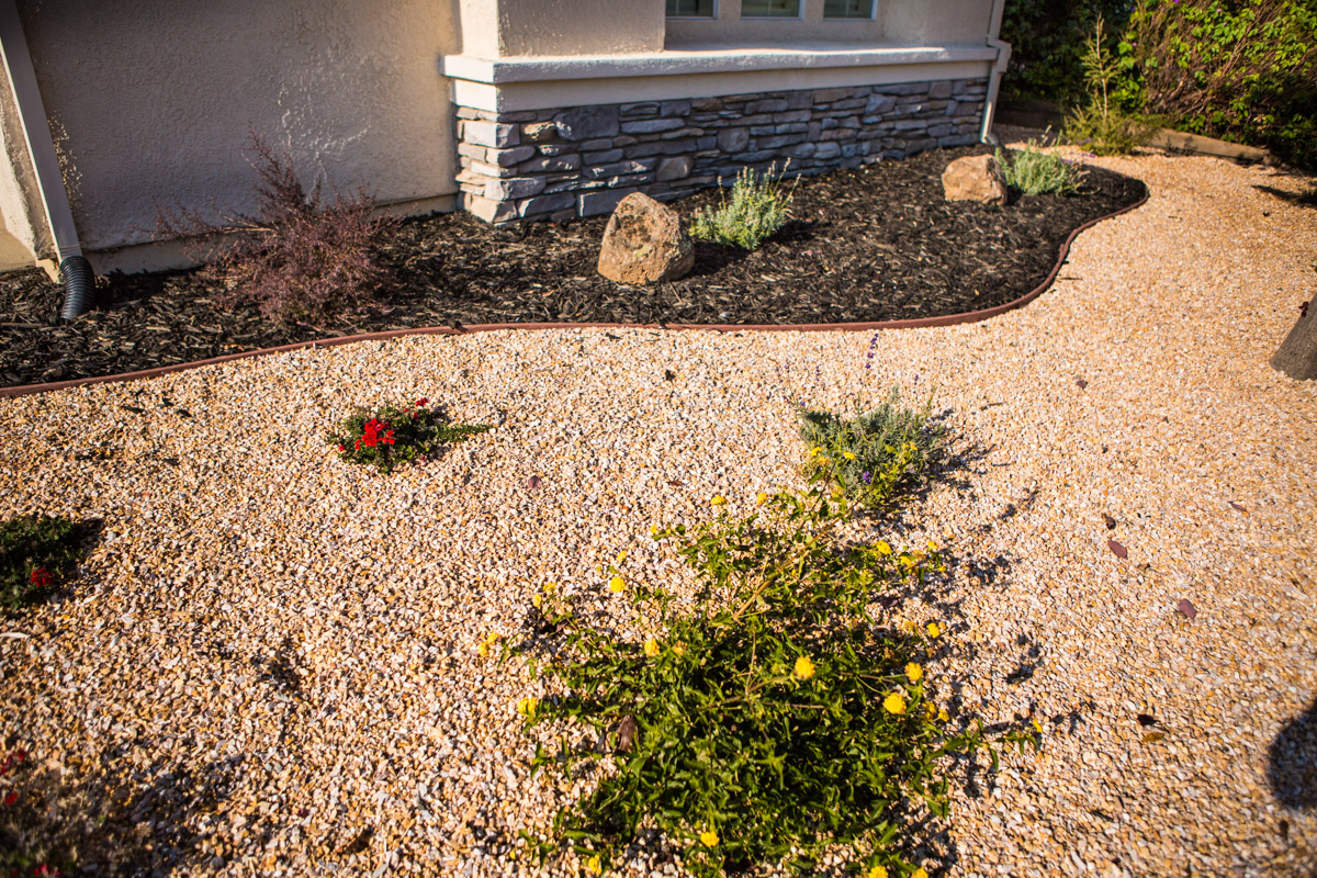 Defining Xeriscaping (Drought Tolerant Landscaping)
