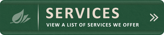 Button_Services