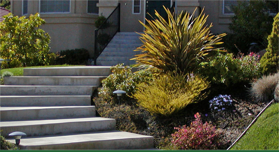 Landscape Services Folsom -Renovations and Remodeling