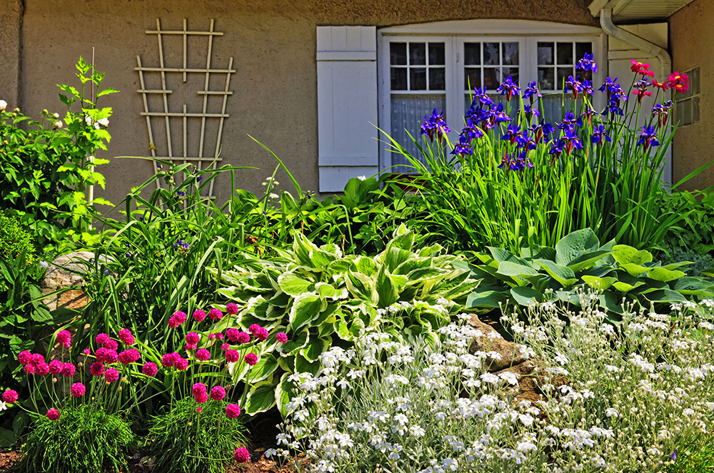 Fair Oaks Landscaper Landscape Design