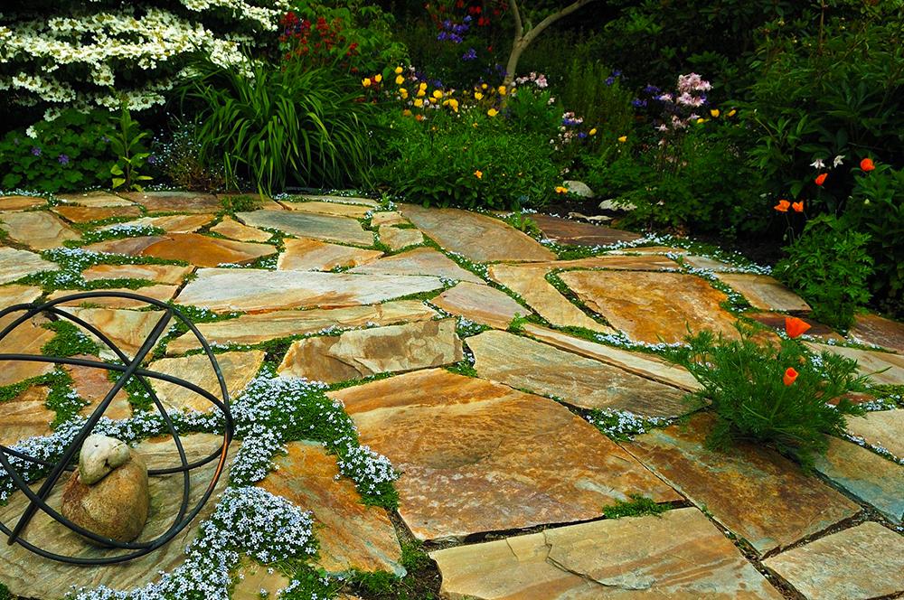 Landscape_Design_Sacramento_01