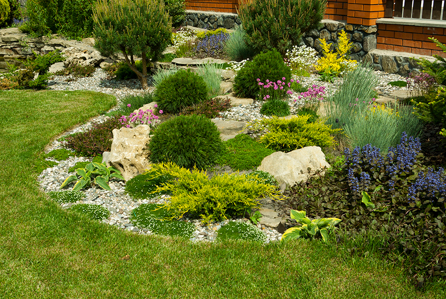 native plant garden designer oregon