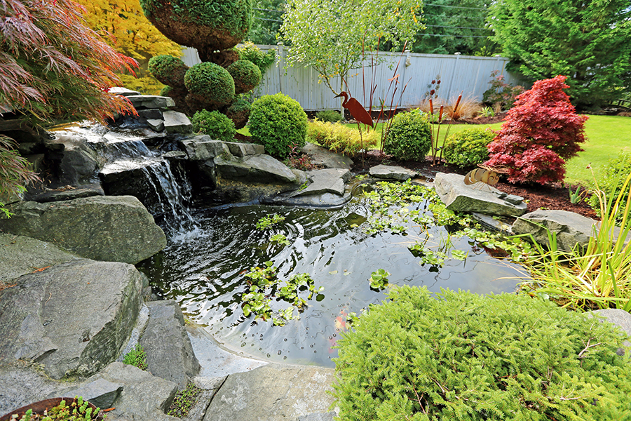 Modern Water Feature Landscape Design Koi Pond Features Sacramento