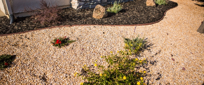 Defining Xeriscaping