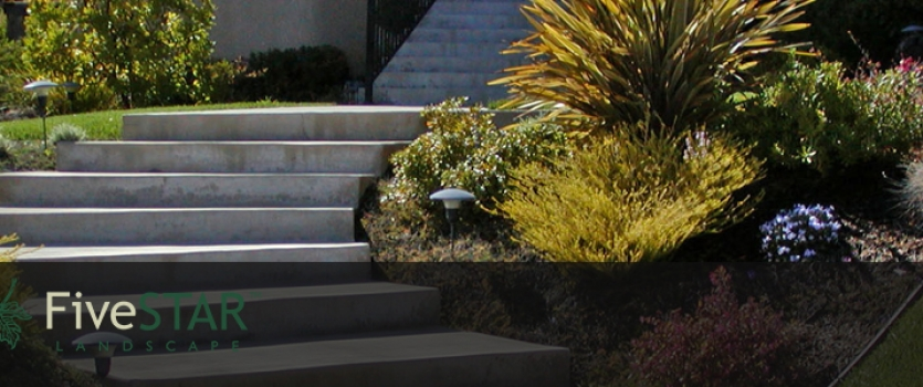 Water Saving Landscapes Do Not Have to Look Like Desert