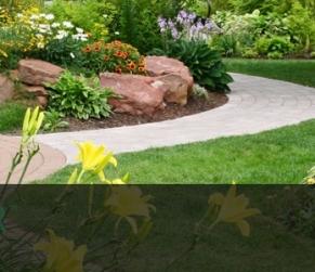 El Dorado Hills Landscape Installation