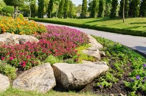 Landscape Design Remodeling Sacramento