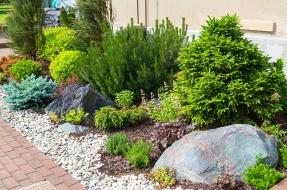Side Yard Landscape Design Sacramento