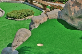 Theme Putting Green Landscaping