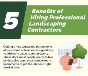 05 Benefits of Hiring Professional Landscaping Contractors