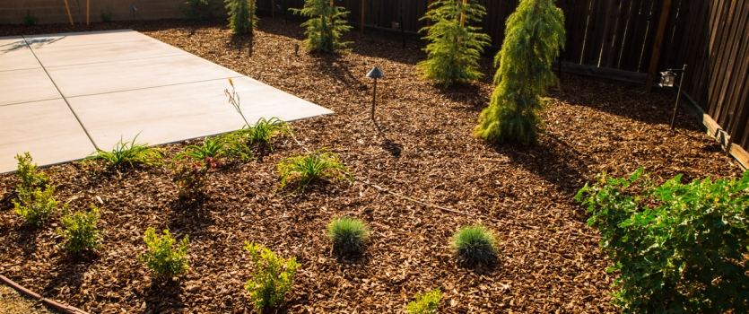 Xeriscape Landscaping Themes